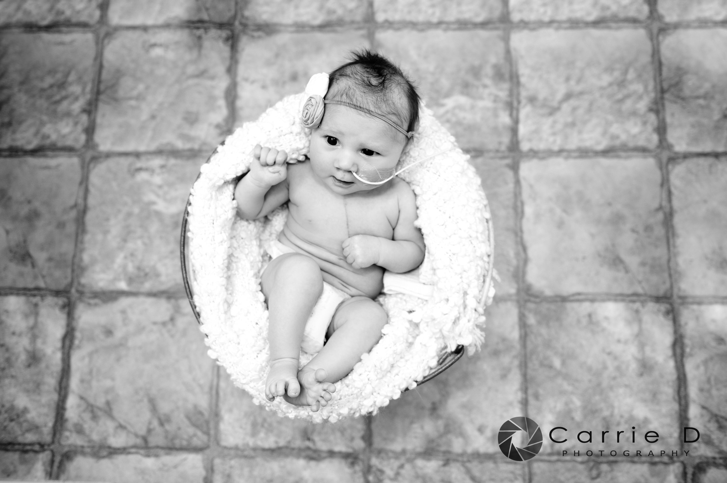 Annapolis Photographer – Annapolis Portrait Photographer – Annapolis Family Photographer - Annapolis Newborn Photographer – Annapolis Infant Photographer – Annapolis Sibling Photographer – Annapolis Natural Light Photographer – Annapolis Lifestyle Photographer – Annapolis Natural Light Portrait - Maryland Photographer – Maryland Portrait Photographer – Maryland Family Photographer - Maryland Newborn Photographer – Maryland Infant Photographer – Maryland Sibling Photographer – Maryland Natural Light Photographer – Maryland Lifestyle Photographer – Maryland Natural Light Portrait  - Sophia_DSC_2479B