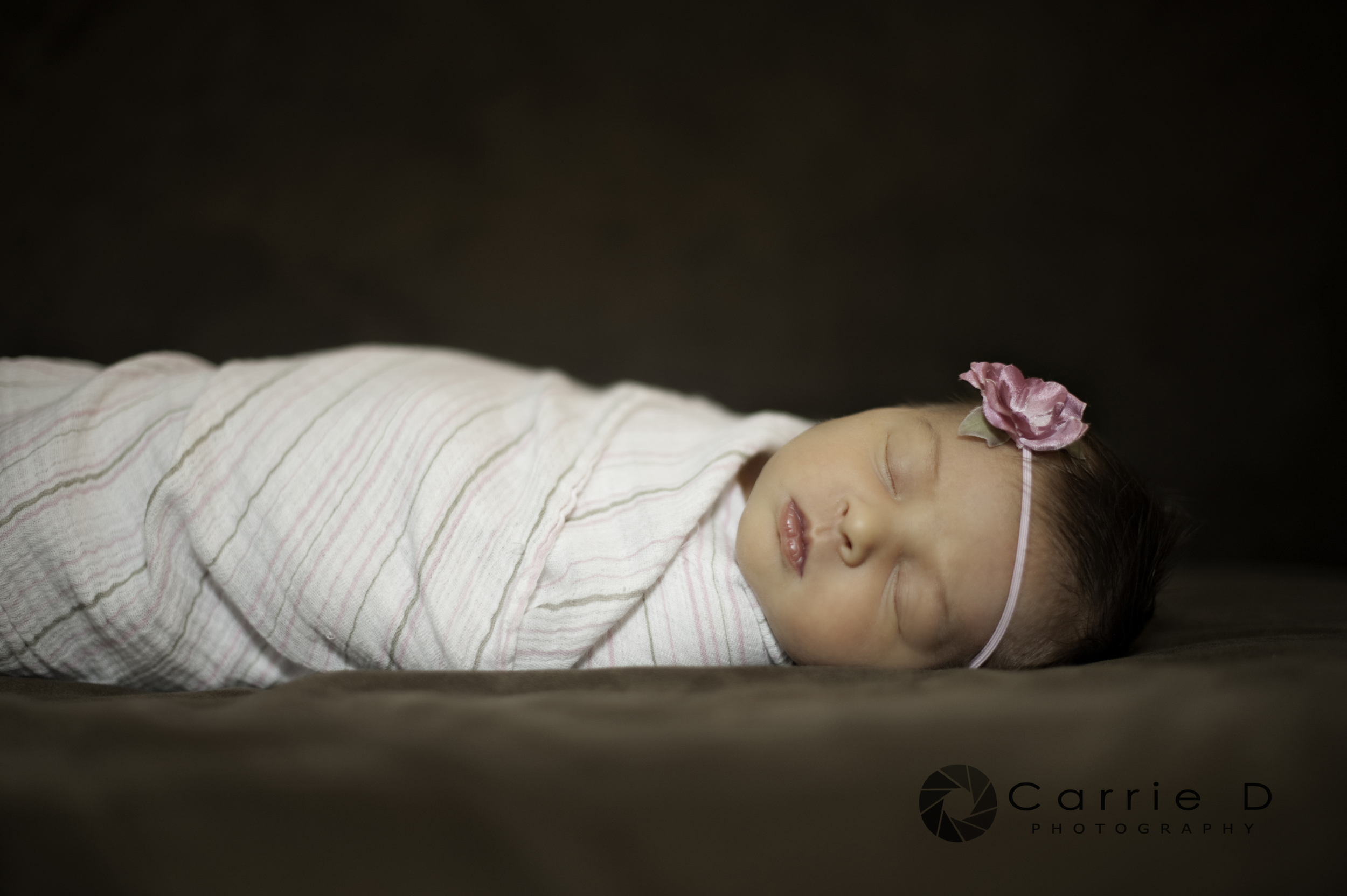 Howard County Photographer – Howard County Portrait Photographer – Howard County Newborn Photographer – Howard County Baby Photographer - Howard County Infant Photographer Howard County Child Photographer – Howard County Sibling Photographer – Howard County Natural Light Photographer – Howard County Lifestyle Photographer – Howard County Natural Light Portrait Photographer - Maryland Photographer – Maryland Portrait Photographer – Maryland Newborn Photographer – Maryland Child Photographer – Maryland Sibling Photographer – Maryland Natural Light Photographer – Maryland Lifestyle Photographer – Maryland Natural Light Portrait Photographer - Maryland Baby Photographer - Maryland Infant Photographer - Annabelle_DSC_4844B