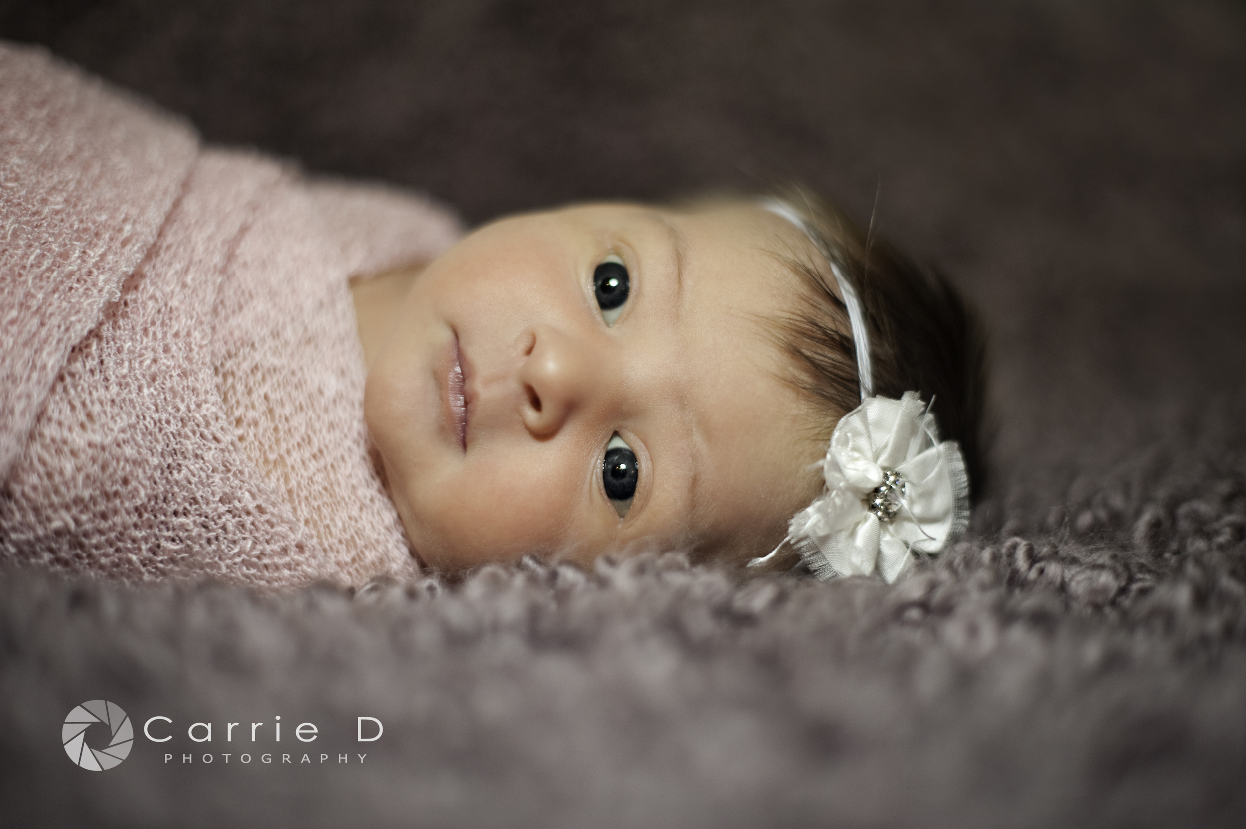 Howard County Photographer – Howard County Portrait Photographer – Howard County Newborn Photographer – Howard County Baby Photographer - Howard County Infant Photographer Howard County Child Photographer – Howard County Sibling Photographer – Howard County Natural Light Photographer – Howard County Lifestyle Photographer – Howard County Natural Light Portrait Photographer - Maryland Photographer – Maryland Portrait Photographer – Maryland Newborn Photographer – Maryland Child Photographer – Maryland Sibling Photographer – Maryland Natural Light Photographer – Maryland Lifestyle Photographer – Maryland Natural Light Portrait Photographer - Maryland Baby Photographer - Maryland Infant Photographer - Annabelle_DSC_4961B