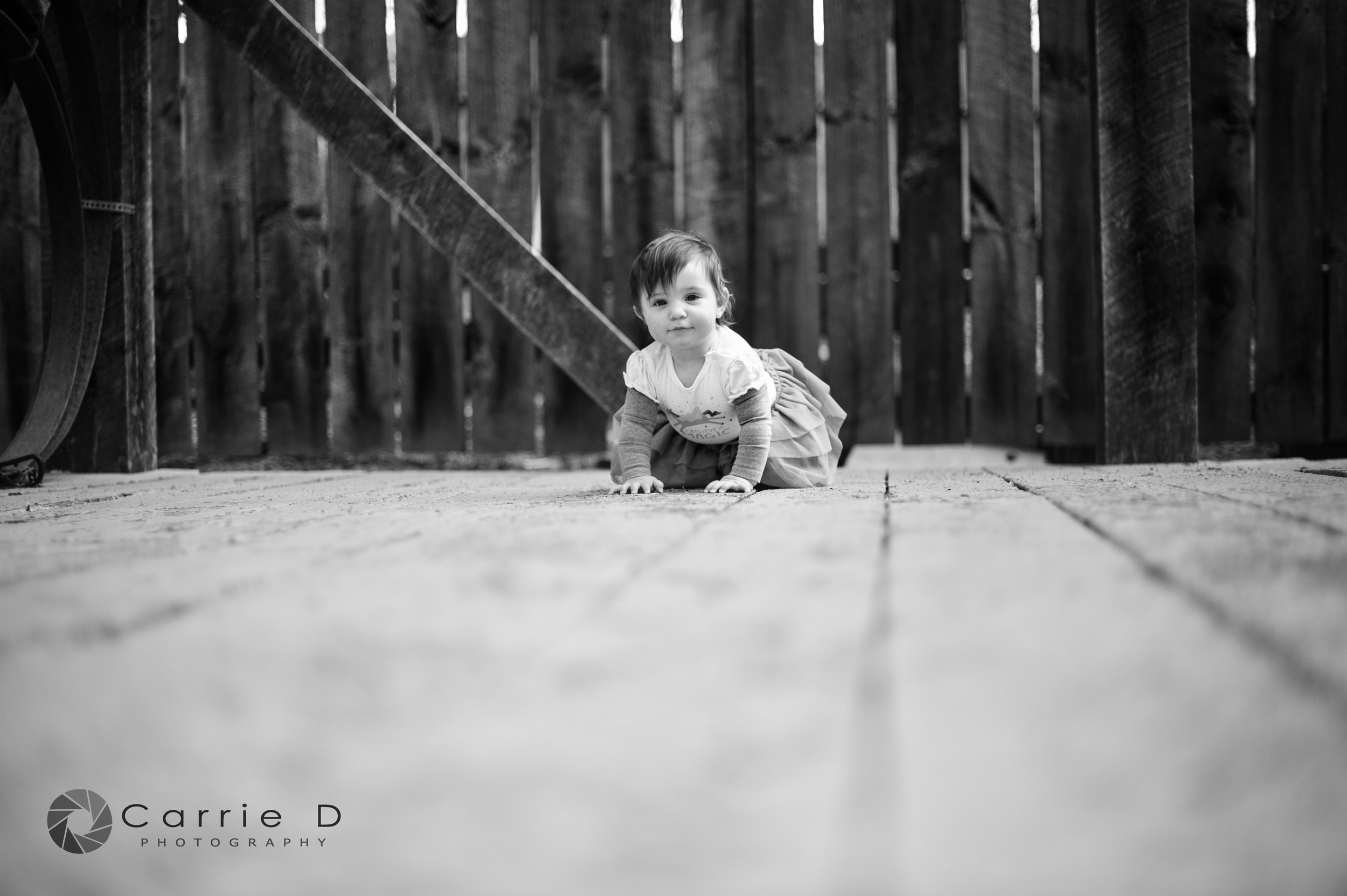 Harford County Photographer – Harford County Portrait Photographer – Harford County Birthday Photographer – Harford County Child Photographer – Harford County Cake Smash Photographer – Harford County Natural Light Photographer – Harford County Lifestyle Photographer – Harford County Natural Light Portrait Photographer - Maryland Photographer – Maryland Portrait Photographer – Maryland Birthday Photographer – Maryland Child Photographer – Maryland Cake Smash Photographer – Maryland Natural Light Photographer – Maryland Lifestyle Photographer – Maryland Natural Light Portrait Photographer - Harper_DSC_6924B