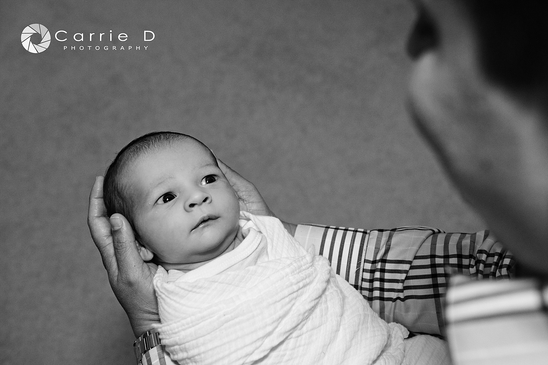 Baltimore Photographer – Baltimore Portrait Photographer – Baltimore Family Photographer - Baltimore Newborn Photographer – Baltimore Infant Photographer – Baltimore Sibling Photographer – Baltimore Natural Light Photographer – Baltimore Lifestyle Photographer – Baltimore Natural Light Portrait - Maryland Photographer – Maryland Portrait Photographer – Maryland Family Photographer - Maryland Newborn Photographer – Maryland Infant Photographer – Maryland Sibling Photographer – Maryland Natural Light Photographer – Maryland Lifestyle Photographer – Maryland Natural Light Portrait  - Bethesda Photographer – Bethesda Portrait Photographer – Bethesda Family Photographer - Bethesda Newborn Photographer – Bethesda Infant Photographer – Bethesda Sibling Photographer – Bethesda Natural Light Photographer – Bethesda Lifestyle Photographer – Bethesda Natural Light Portrait Photographer - 2014-06-06_0013