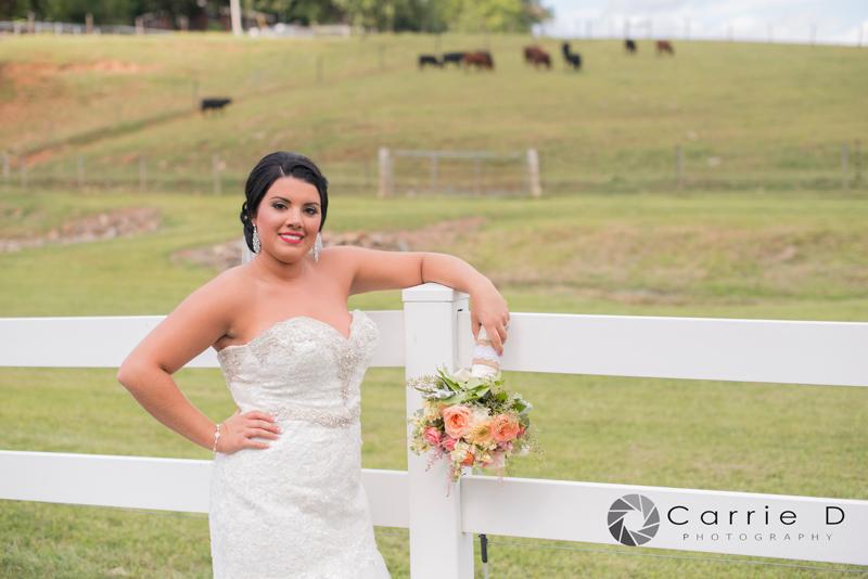 Rajotte Wedding-7176