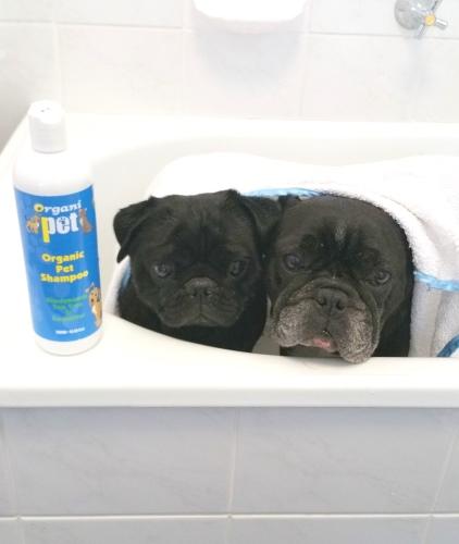 Organic doggy bath.jpg