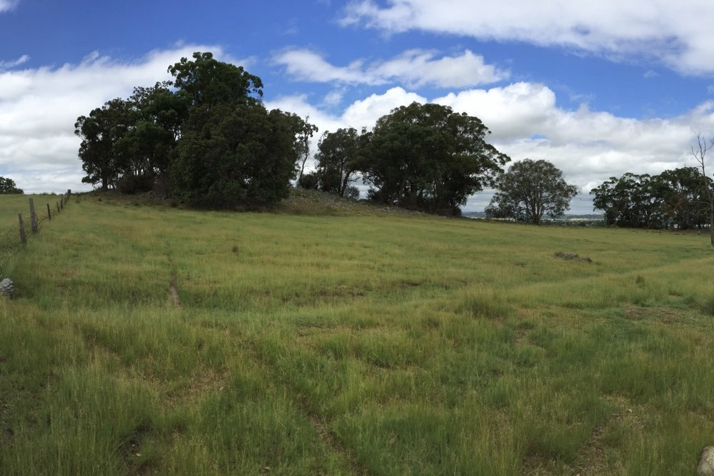 Pictured: The view from the south western corner of the Tenterfield property.
