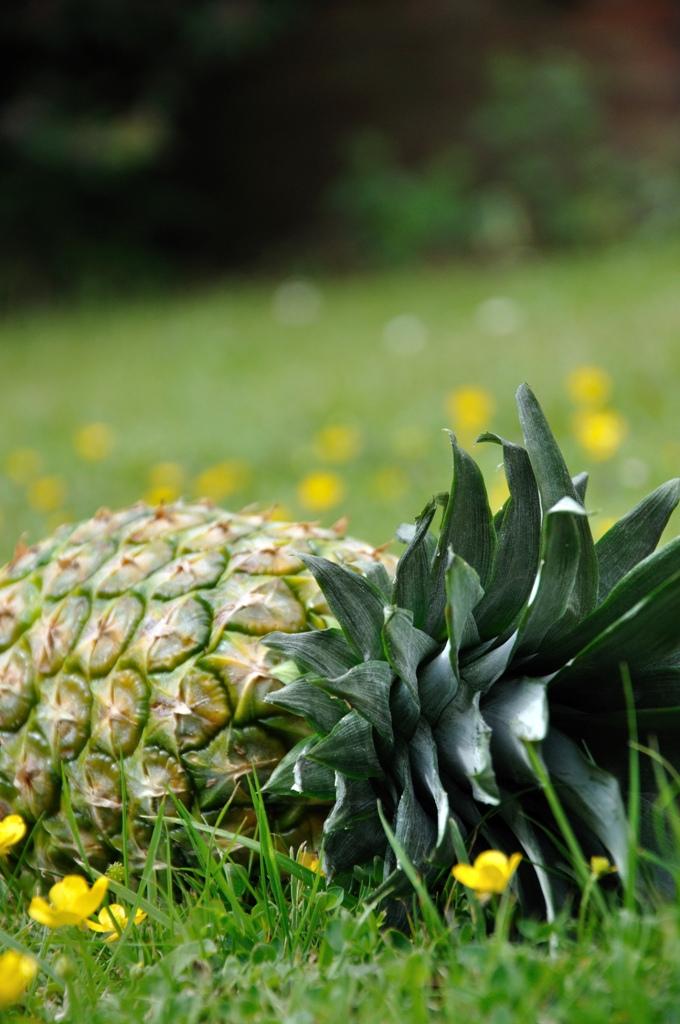 pineapple3.jpg