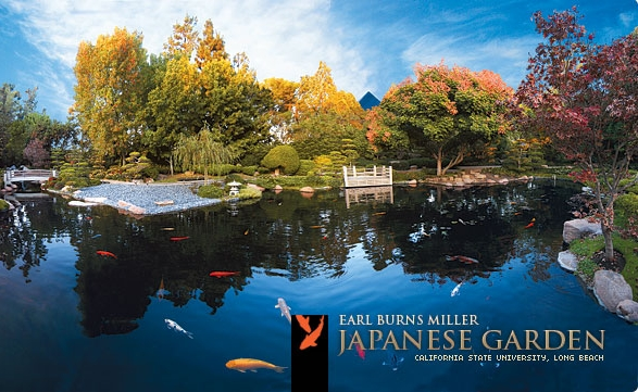 One of Long Beach's best-kept secrets, don't wait to explore this stunning Japanese garden. Bring a picnic for an oasis from your busy summer adventures.
