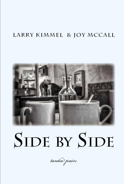 SidebySide-for website.jpg