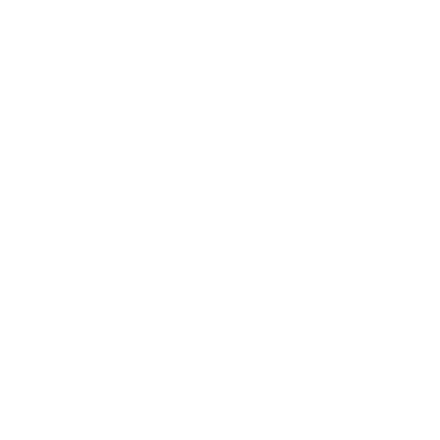 A LUXURY TRAVELLER