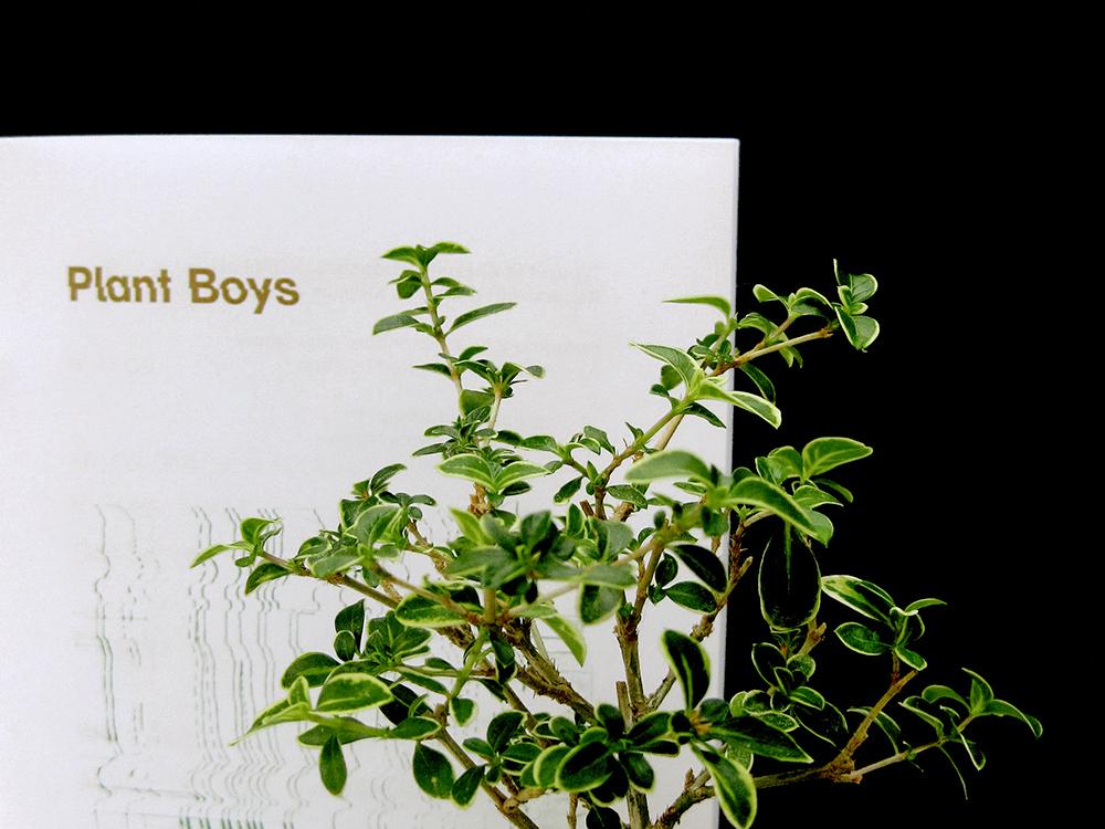 plantboyszine2.jpg