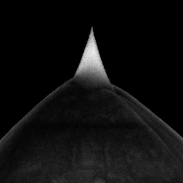 Single Crystal Sharp Diamond Tip