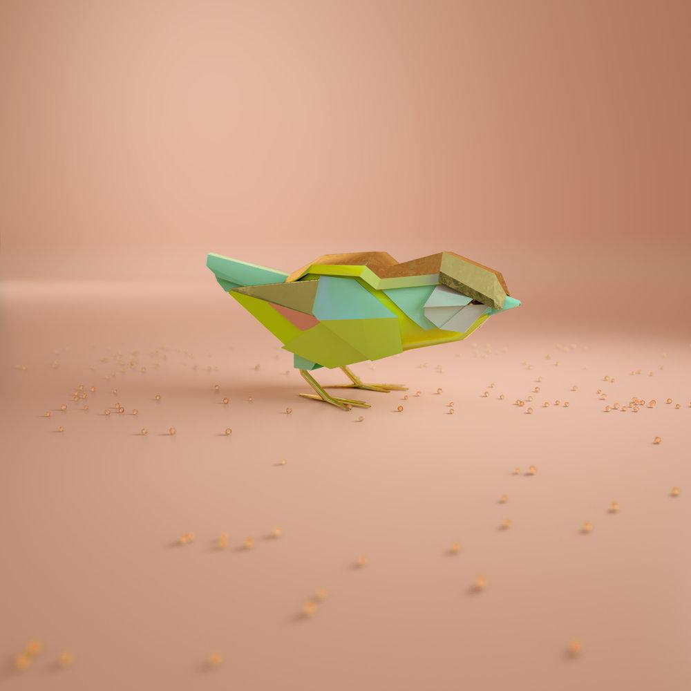 Bird_Conform_v01.jpg