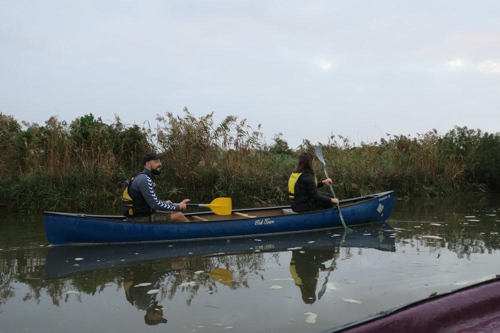 Kayak dans le bassin d'Arcachon et sur la rivière L'Eyre