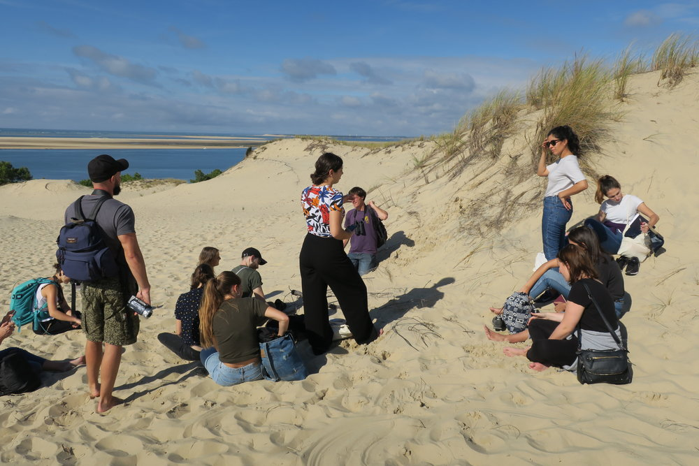 Walking on the dunes and discovering the marram grass