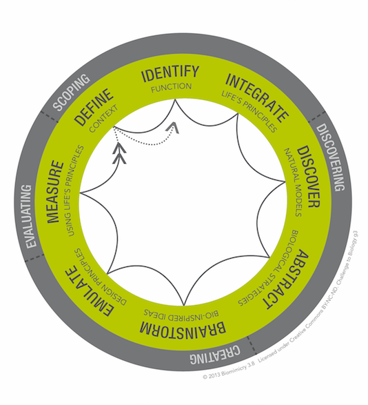 Challenge to Biology (framework developed by Biomimicry 3.8 and the Biomimicry Institute)