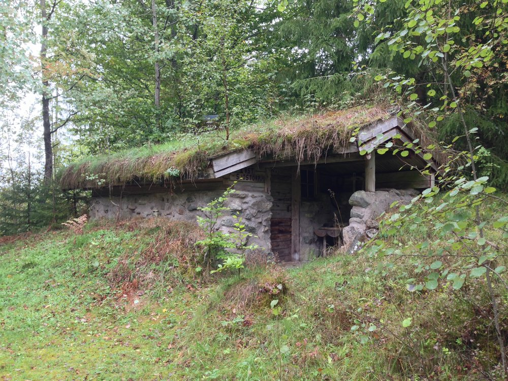 Traditional house with green roof used for isolation