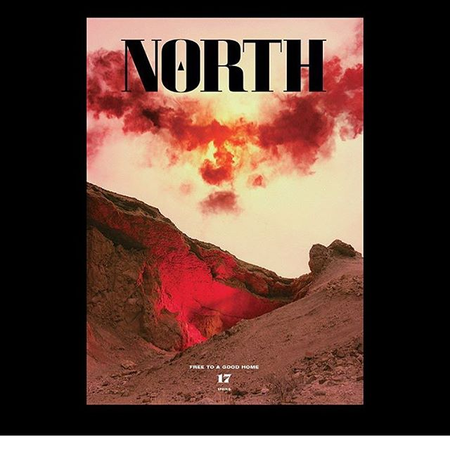 Stoked to be featured in this issue of North Journal, where I take you on a seaside forage workshop with Diego Bonetto @theweedyone and Oliver Brown @fatofthelandandsea Grab a copy where you get good coffee!! PS how amazing is this cover by @neilkrug 🌈