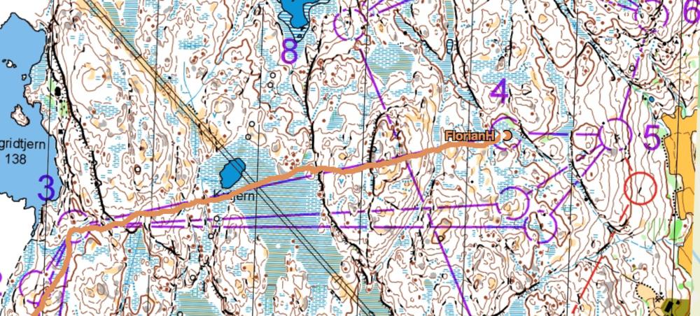Staffel-Training im Akselås Wald.