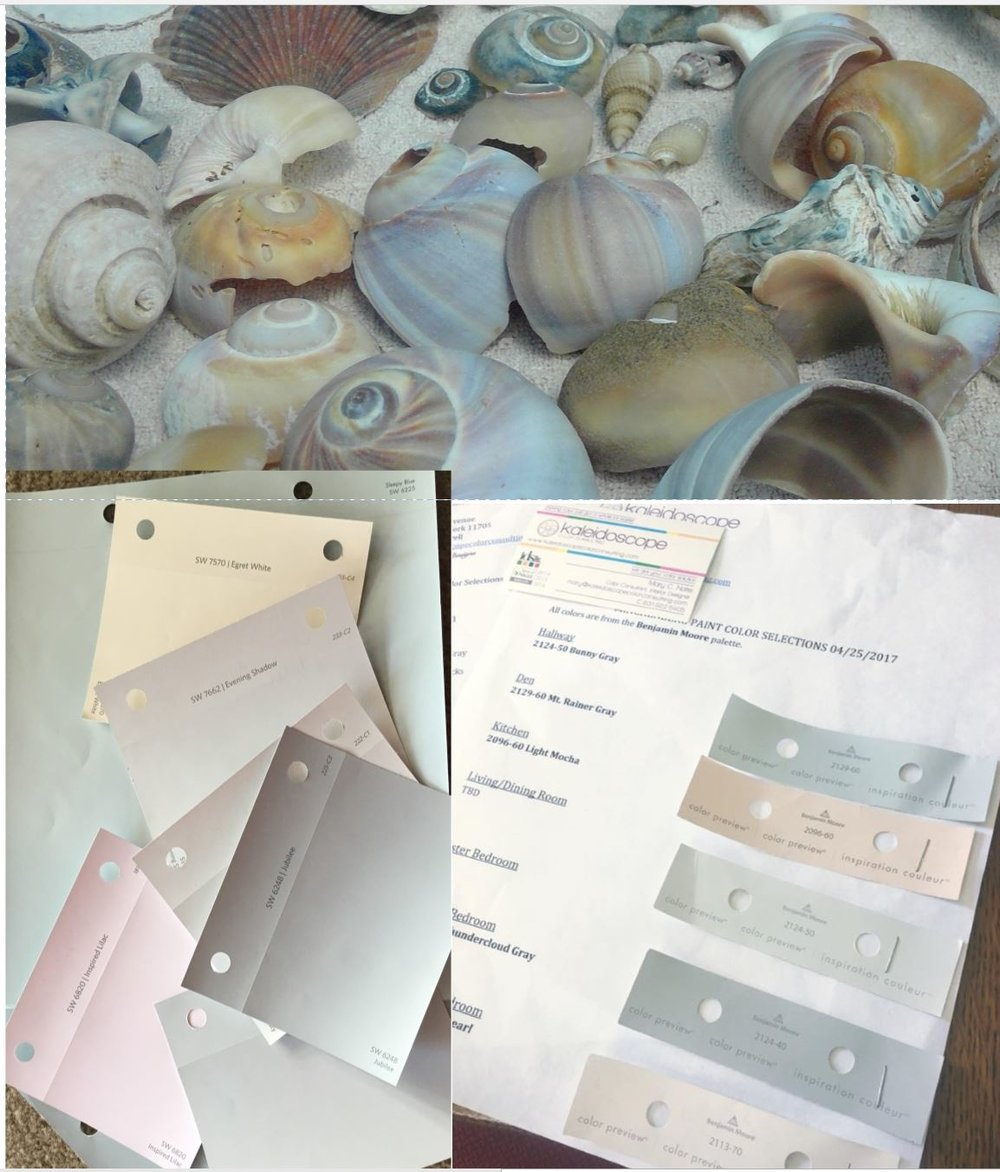 shells and colors.JPG