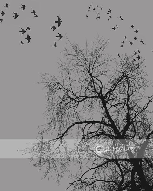 birds and tree halloween printable