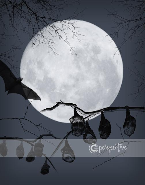 bats and full moon halloween printable