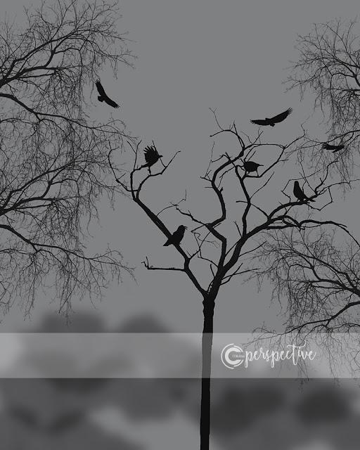 crows in tree halloween printable