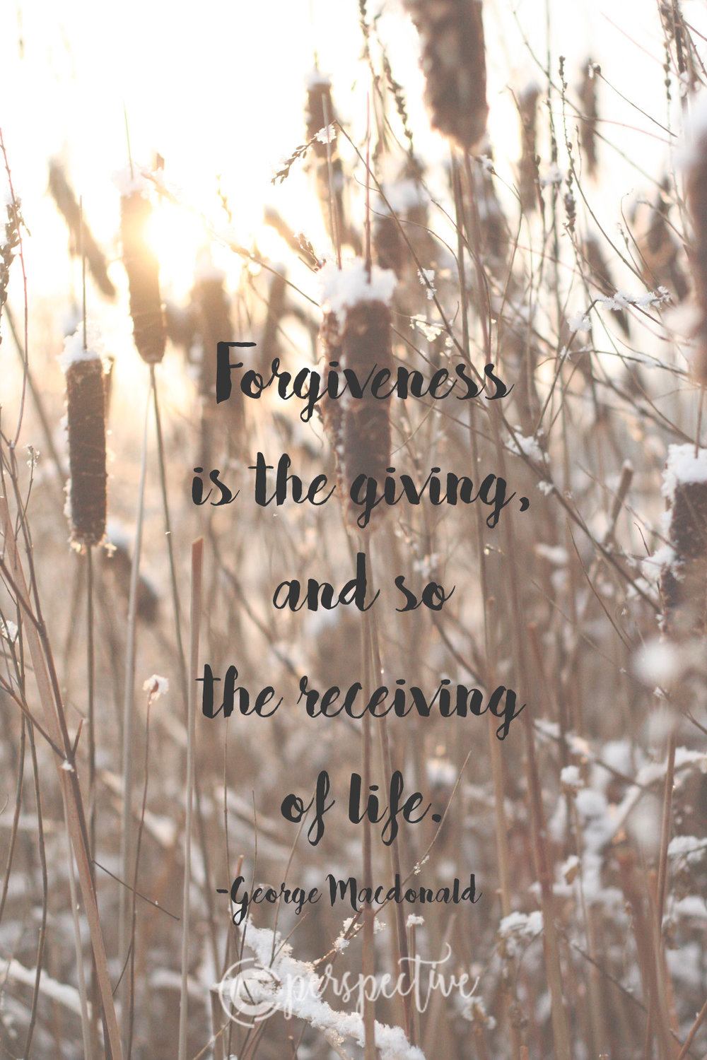 forgiveness quote macdonald