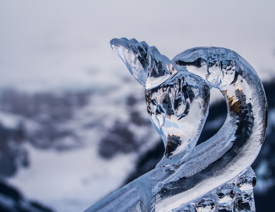 Ice swan sculpture.jpg
