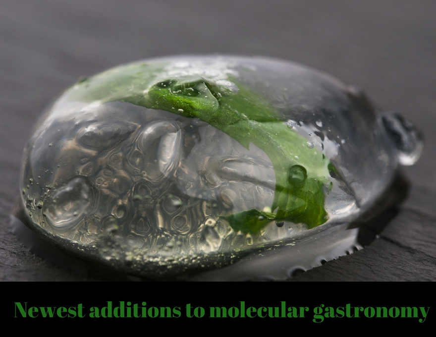 Newest additions to molecular gastronomy