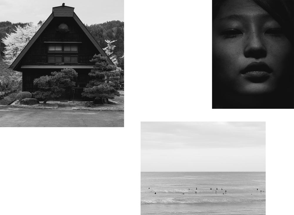 Sumimasen-Dan-Wilton-2.jpg