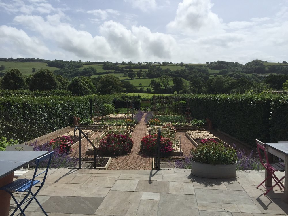 The Yeo Valley Organic Garden in spring.  Dates for 2018:   May 3rd - SOLD OUT     June 7th - 3 places    June 15th - 1 place    July 5th - SOLD OUT    August 9th - SOLD OUT   10am - 3pm  £55 - This fee includes all art materials, garden entry and a delicious lunch!    Contact me  to book a place. Just to let you know that places are limited and offered on a first come first served basis so book as soon as you can to avoid disappointment.