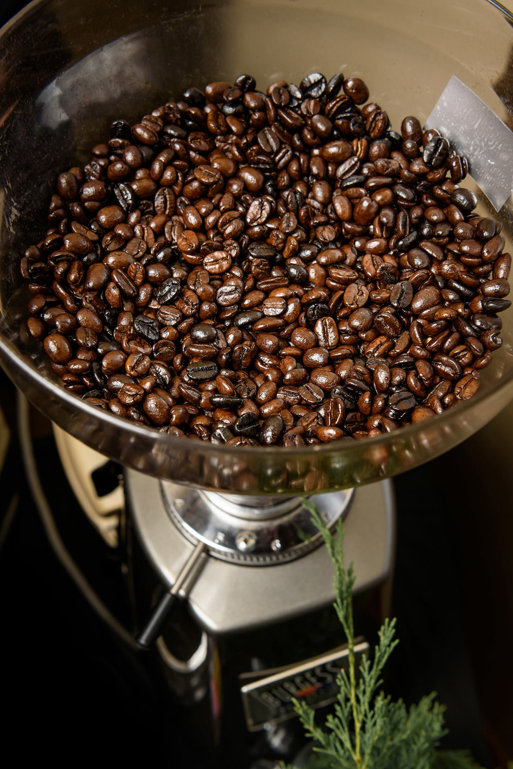 The essential foundation to a cup of excellent specialty coffee -- freshly roasted beans.