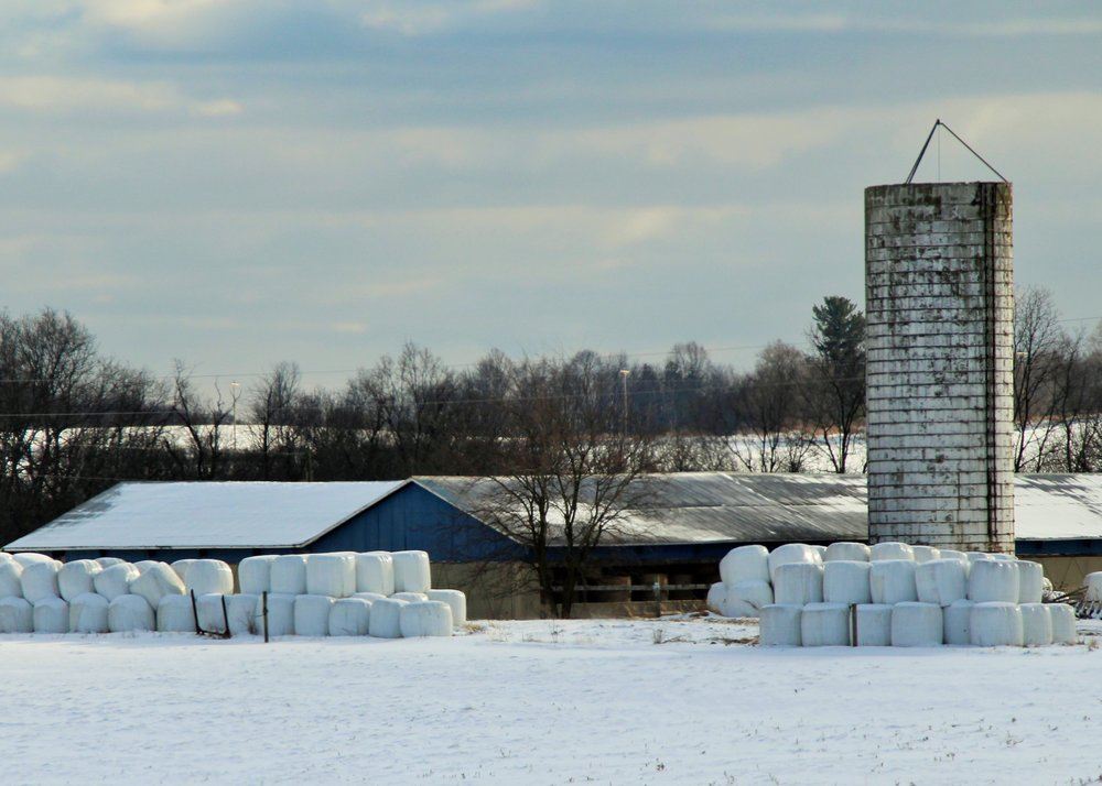 Hay protected in plastic bale wrap stands stockpiled and ready to be used as feed throughout the winter.