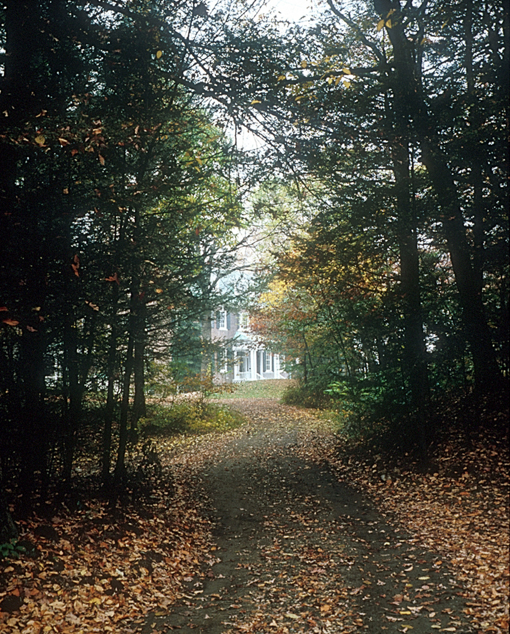 Mystery Point - Exterior - Driveway.jpg