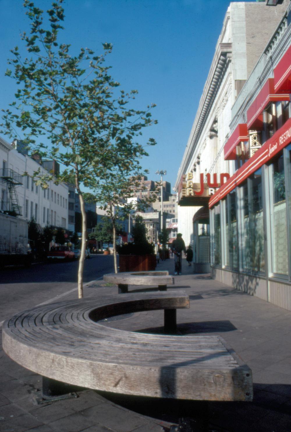 Fulton Street Mall Slide03 - Completed.jpg