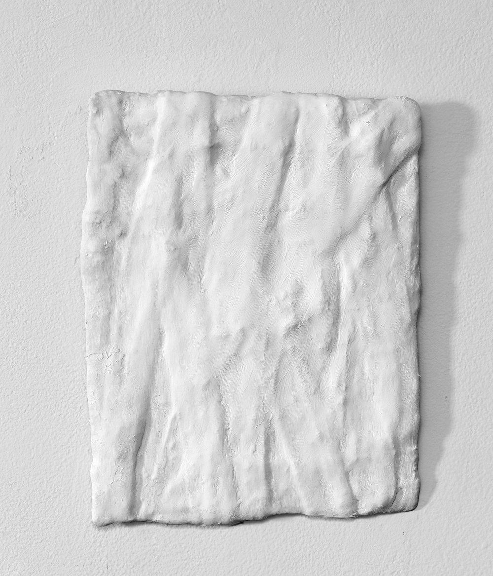 _________________  2016  plaster cloth  11.75 x 9.25  _________________
