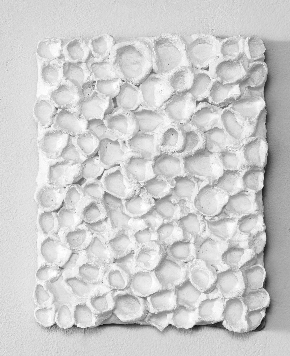 _________________  2016  plaster cloth  11.5 x 9.25  _________________