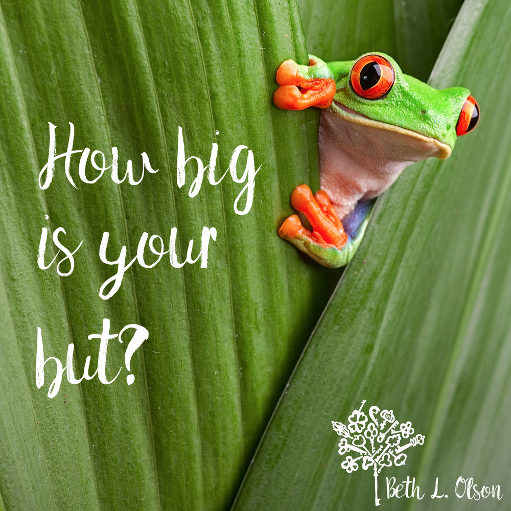 blog-how-big-is-your-but.jpg