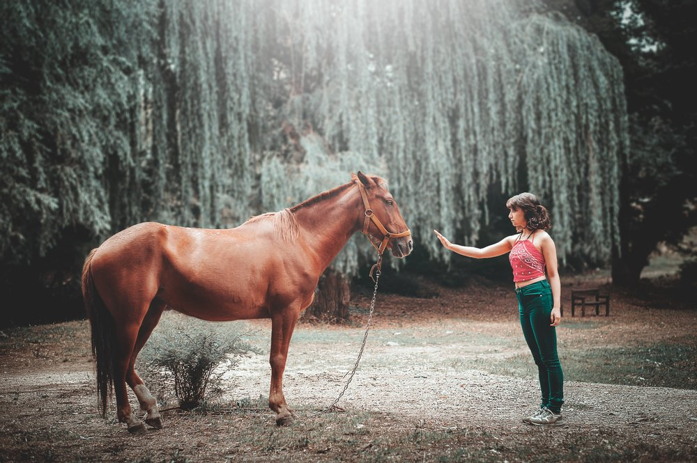 timid-girl-with-horse.jpg