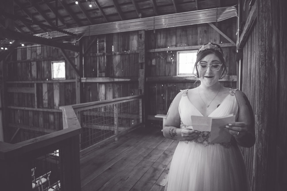 Justine-Cody-Wedding-Blissful-Barn-Three-Oaks-Michigan-222-1667.jpg