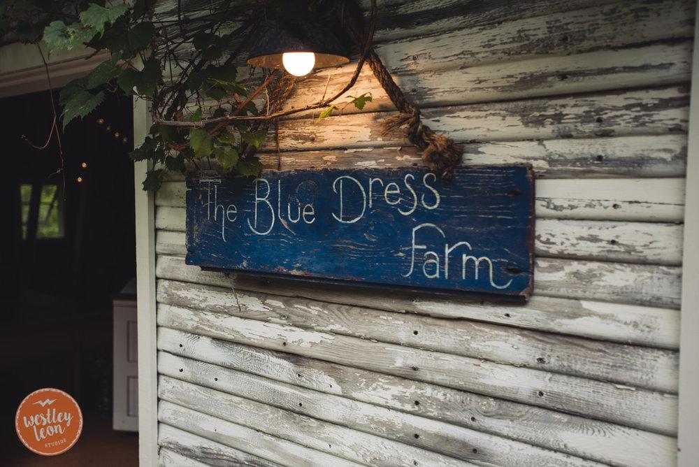 Blue-Dress-Barn-Wedding-Paige-Tyler-135.jpg