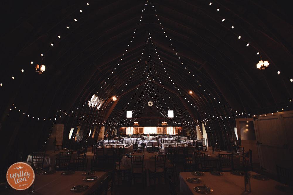 Blue-Dress-Barn-Wedding-Paige-Tyler-136.jpg