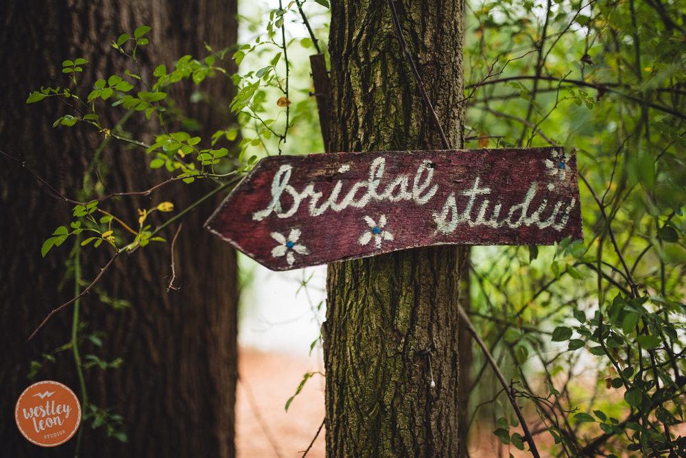 Blue-Dress-Barn-Wedding-Paige-Tyler-164.jpg