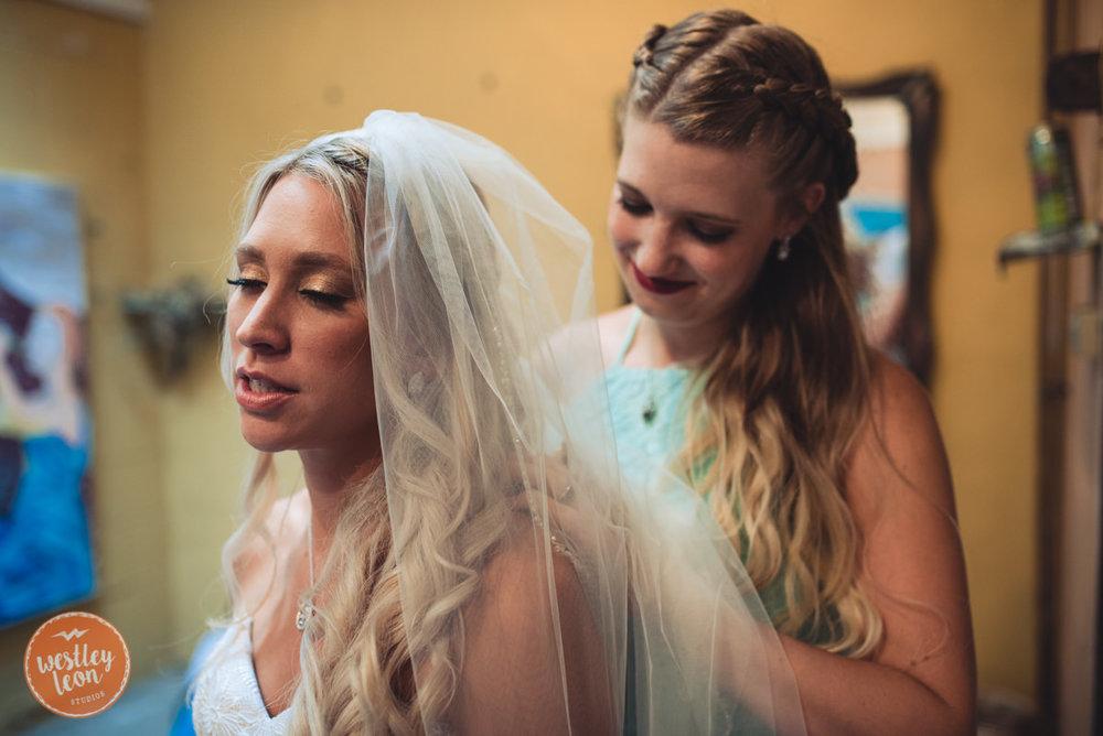 Blue-Dress-Barn-Wedding-Paige-Tyler-303.jpg