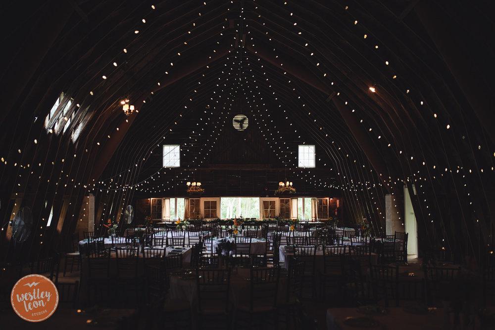 Blue-Dress-Barn-Wedding-Paige-Tyler-316.jpg