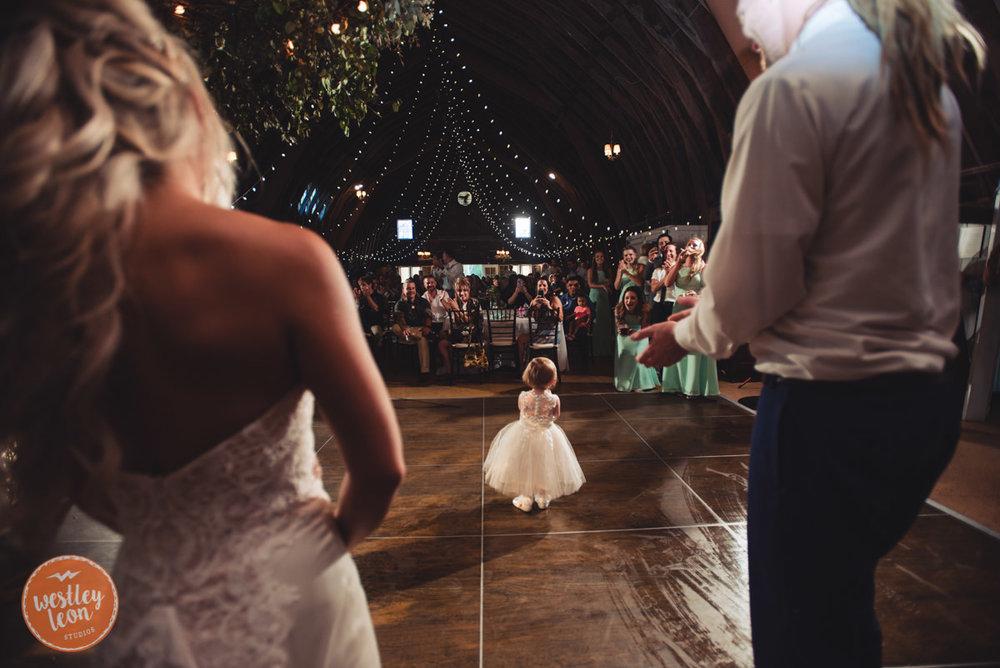 Blue-Dress-Barn-Wedding-Paige-Tyler-799.jpg