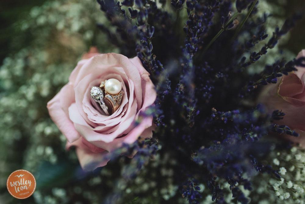 Swan-Lake-Wedding-Jackie-Alex-35.jpg
