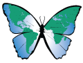 bmi logo_butterly.png