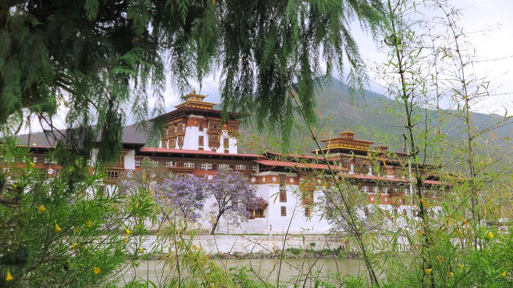 bhutan day 3 royal.jpg