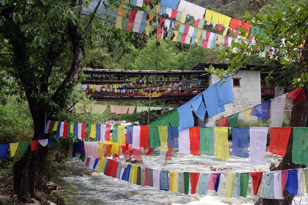 Bhutan Picnic day.jpg