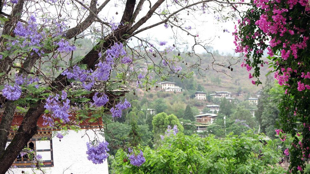 Bhutan goodbye.jpg